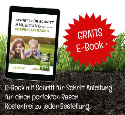 gratis-ebook-footer